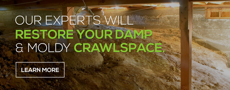 Grandville Basement Waterproofing